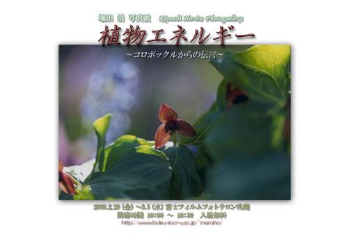 2008fuji_3