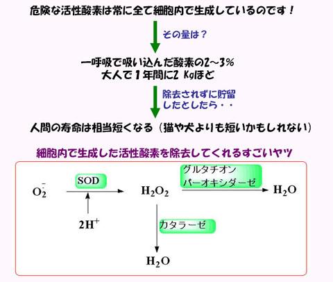 Blg5_2