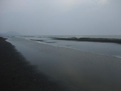2009_041406