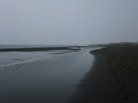 2009_041408