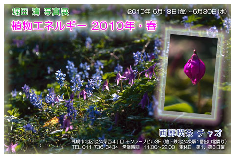 Dm201005_2