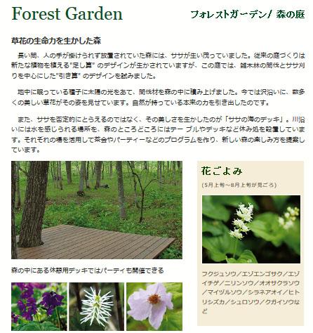 Forest_garden